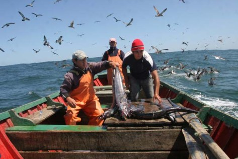 pescaartesanalelmerc1_83838